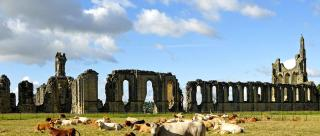 /images/byland-abbey-hero
