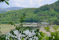 /images/mawddach_woodlands_rspb_reserve