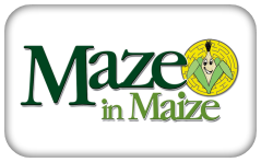 /images/maze_in_maize