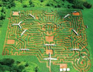 /images/museum_of_mazes