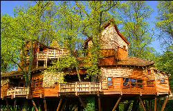 /images/treehouse