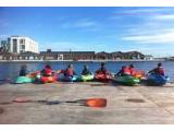 Surfdock Watersports School - Dublin