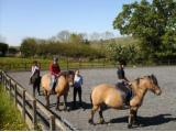 Shilstone Riding Centre