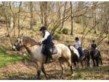 Long Mountain Pony Trekking Centre