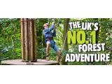 Go Ape Tree Top Adventure - Crawley