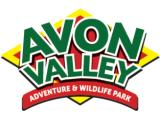 Avon Valley Adventure & Wildlife Park - Bristol