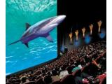 Blue Reef Aquarium & Cinema, Bristol