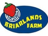 Briarlands Farm - Stirling