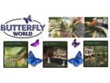 Butterfly & Fountain World, Wootton