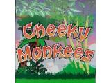 Cheeky Monkees Softplay - Clyde Valley
