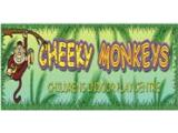 Cheeky Monkeys Indoor Play Centre - Ballyclare