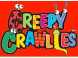 Creepy Crawlies Adventure Playsite - York