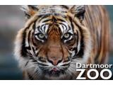 Dartmoor Zoological Park, Plymouth