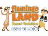 Flamingo Land - Malton