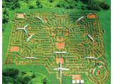 Museum of Mazes