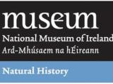 National Museum of Ireland - Natural History, Dublin