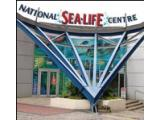 National Sea Life Centre - Birmingham