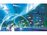 Blue Reef Aquarium - Hastings