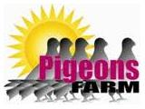 Pigeons Farm, Peterborough