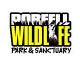 Porfell Wildlife Park & Sanctuary, Liskeard