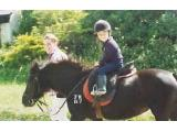 Roylands Riding Stables