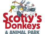 Scotty's Donkeys & Animal Park