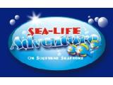 Sealife Adventure - Southend on Sea