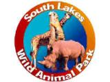 South Lakes Wild Animal Park