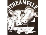 Streamvale Farm, Belfast