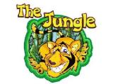 The Jungle - Warrington