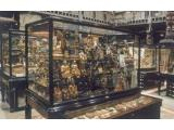 The Pitt Rivers Museum, Oxford