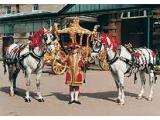 The Royal Mews - Buckingham Palace